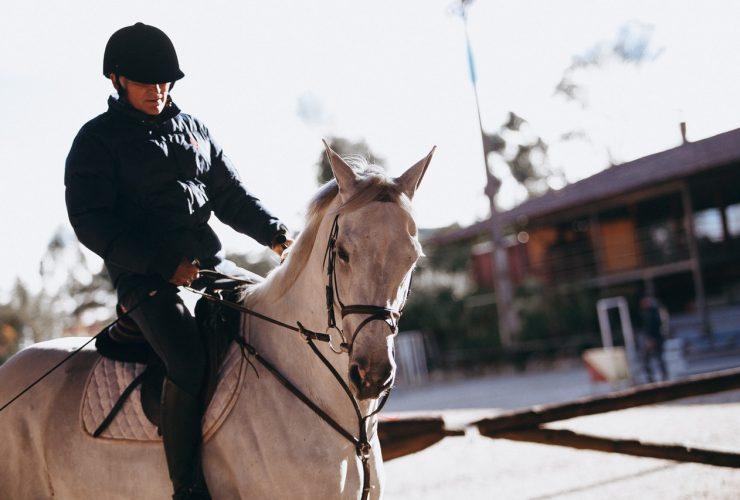 bescherming paardrijden