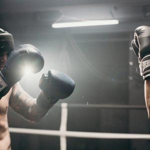 categorie vechtsport